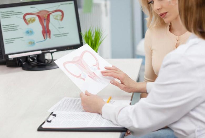 صورة الدورة بعد النفاس , الدورة الشهرية في فترة ما بعد الولاده