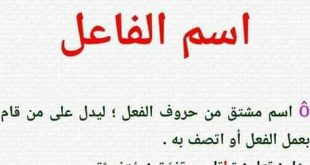 بالصور ما هو اسم الفاعل , احد دروس النحو في اللغه العربية 7407 3 310x165