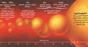 صور ما هو الكولسترول , وظائف الكوليسترول لجسم الانسان