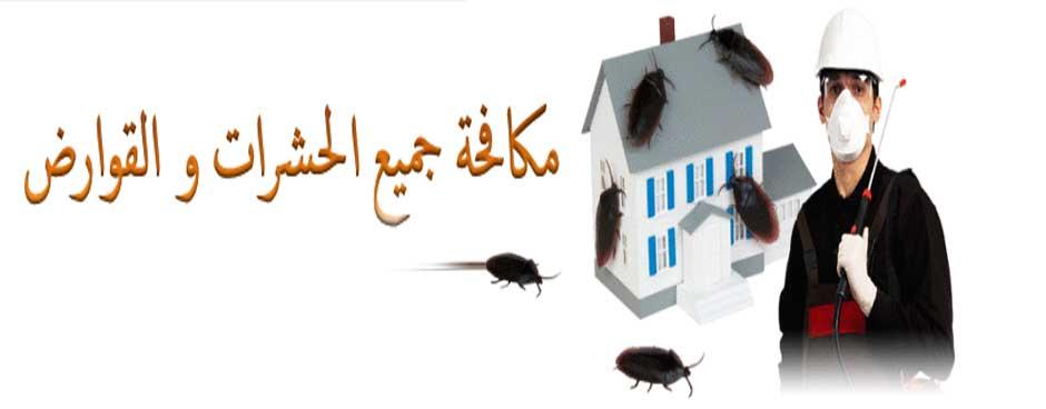 صور شركة مكافحة حشرات بينبع , افضل شركة للقضاء على الحشرات