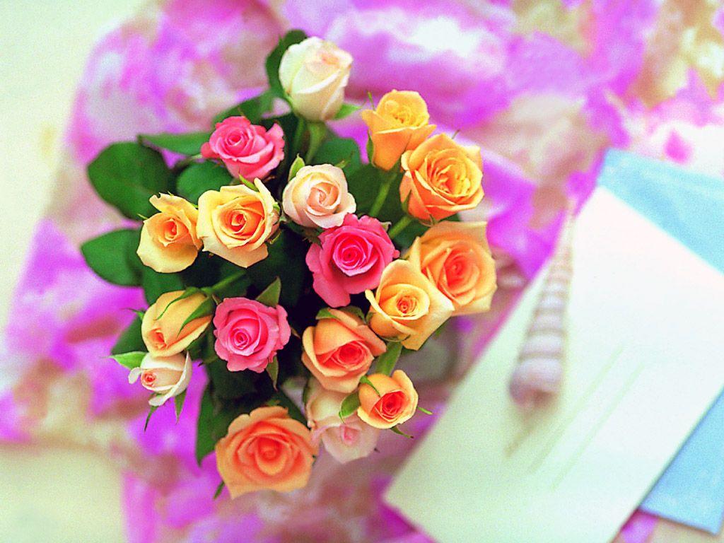 صورة اجمل صور للزهور، انواع الزهور واشكلها الجميلة