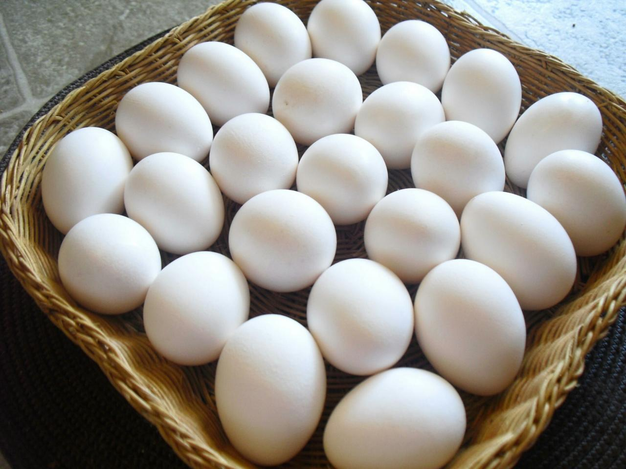 صورة ماهذة الرؤية لن اسمع مثلهامن قبل   ,تفسير رؤية البيض في المنام للمتزوجة