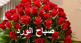 صورة اجمل العبارات التي تقال في الصباح ،صباح الورد والفل