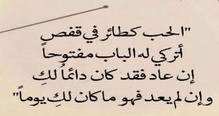 كلام جميل جدا