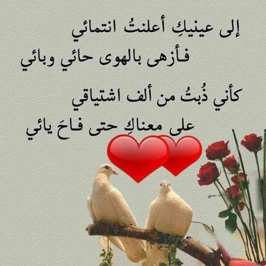 صورة قصيدة حب للحبيب, تعرف علي احدث و اجمل خلفيات الحب و الرومانسيه 2198 2